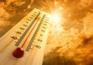 Heat Alert for this Week in North Carolina: Heat Safety Tips